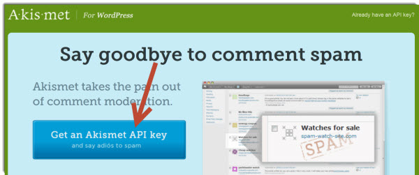 Get Your Akismet API Key image