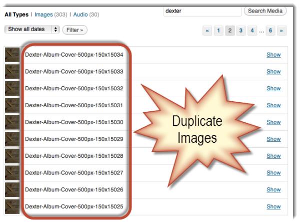 Duplicate Images in WordPress image